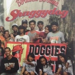DVD Berdansa Bersama Shaggydog